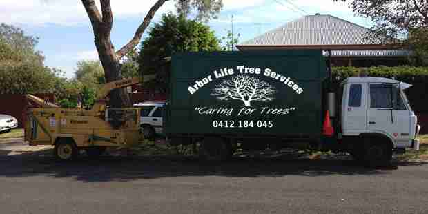 Contact Arborlife Tree Services Toowoomba